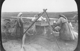Doukhobor_women_winnowing_grain